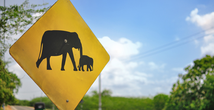 Thailand, elephant road sign