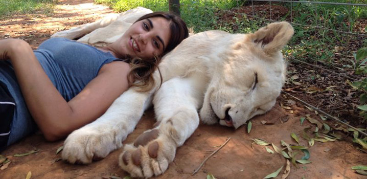 Volunteer with lions